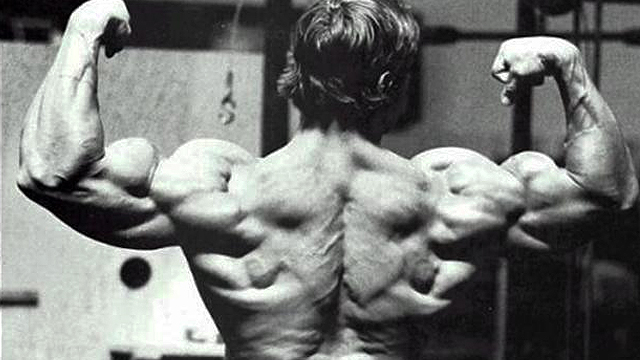 muscular-back