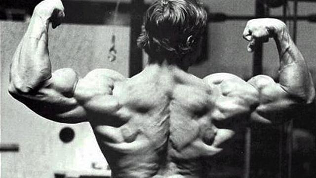 muscular-back
