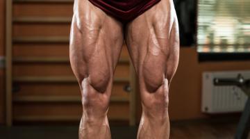 Bodybuilder Legs